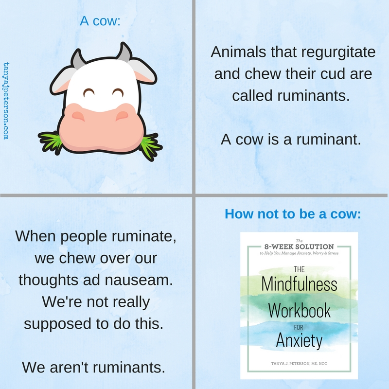 Anxiety and rumination are evil partners working together to damage our wellbeing. Learn how mindfulness helps you be yourself and not a cow.