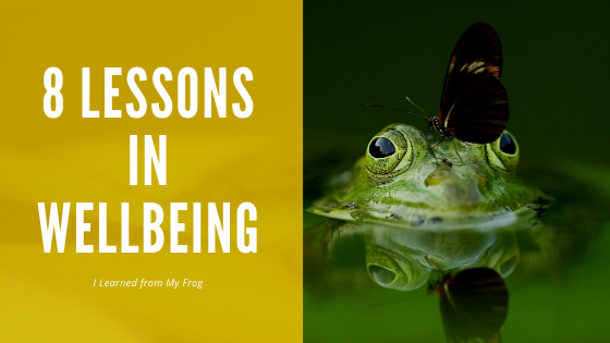 When we're open, we can learn valuable lessons in wellbeing from many sources. I share with you important life lessons from my frog to boost mental health.